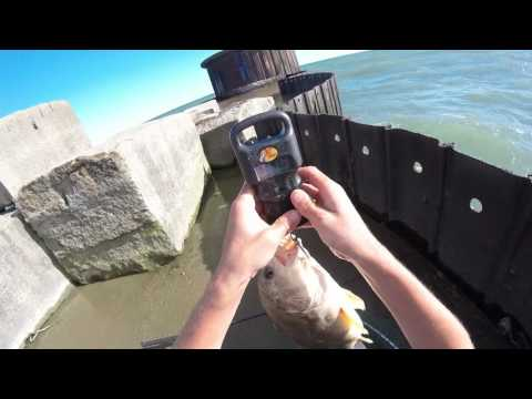 Smallmouth Bass and Drum Fishing in Lake Erie