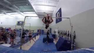 UC Davis Gymnastics 2015