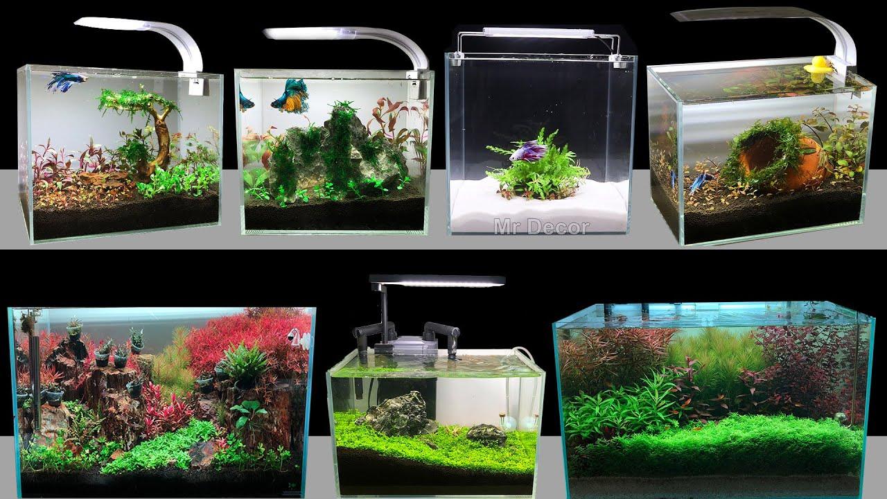 Top 7 How To Make Mini Planted Aquarium Fish Tank At Home ...