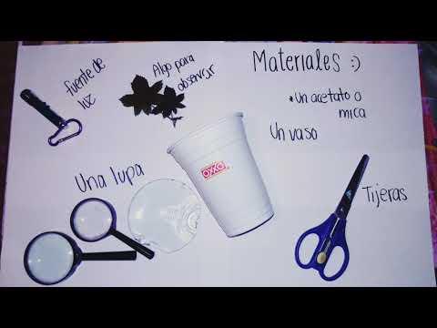 Microscopio Casero Reciclado :)