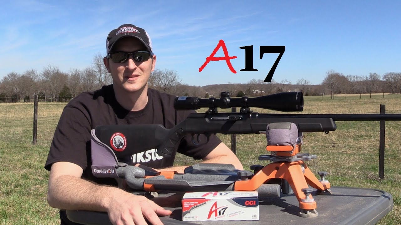 Download SAVAGE A17 REVIEW.