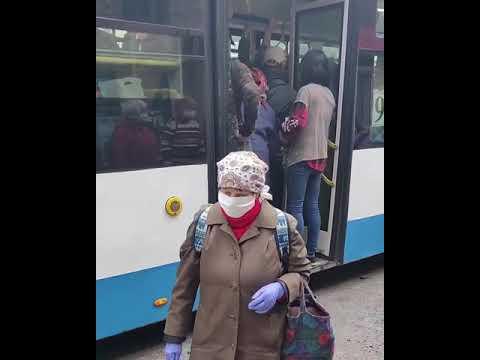 Автобусы едут на дачи