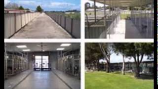 Greyhound Kennels For Sale