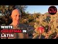"""""""White Christmas"""" in Latin - """"Natalis Albus"""""""