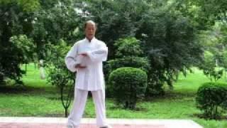 Gambar cover Shaolin Nei Jin Qi Gong