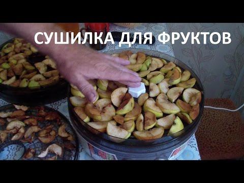 Сушилка для фруктов и овощей Изидри, купить сушилку