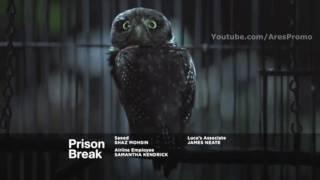 Prison Break 5x9 Trailer Season 5 Episode 9 Promo/Preview
