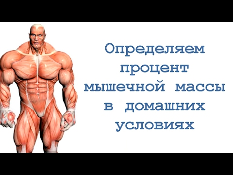 Как рассчитать мышечную массу тела