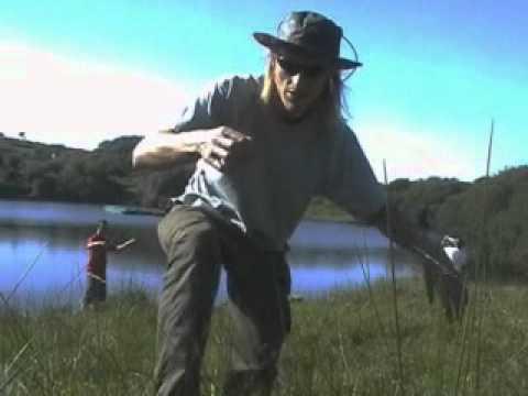 fishing u.k mostly