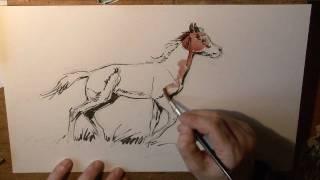 Le dessinateur DERIB, réalise en direct un dessin de poulain - check www.derib.com