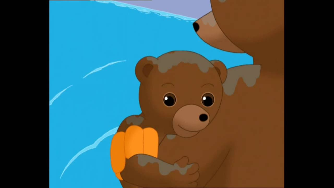 1h de petit ours brun compilation 3 youtube for Petit ours brun a la piscine