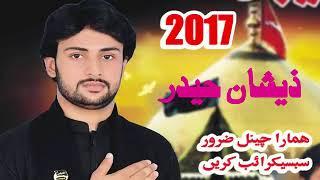A wanj Hussain a si sadsy Khaliq new noha 2018 Zeeshan Haider