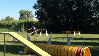 Flyland Go Right Now- 1 year (training)