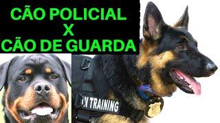 Cão de GUARDA X Cão POLICIAL - QUAL A DIFERENÇA?