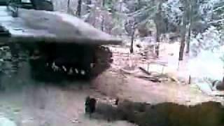 Мужики в лесу на войне