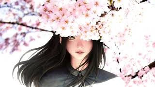 20 Minutes Classic Japanese Music -JAPANESE CHILL MUSIC