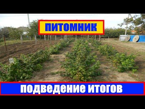 бизнес план выращивание