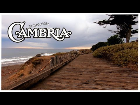 Cambria - August 2020