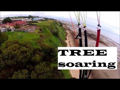 Pine Point Tree Soaring | Paragliding Yorke Peninsula South Australia