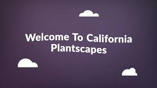 California Plantscapes - Vertical Plant Garden Orange County, CA