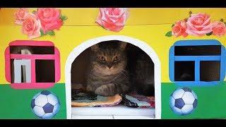 Лайфхак как сделать дом для кота своими руками. Делаем домик для кота и кошки. 10 серия