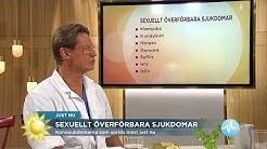"""Doktor Mikael: """"Så vet du om du har klamydia"""" - Nyhetsmorgon (TV4)"""
