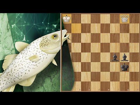 Queen vs 2