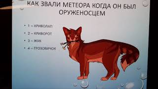 Тест на знание книг Коты-воители ОБЕЩАНИЕ МЕТЕОРА