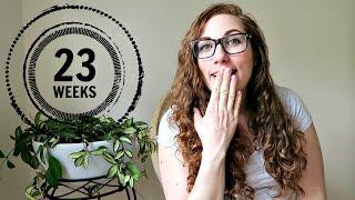 TWIN PREGNANCY UPDATE | 23 WEEKS #cosleeping