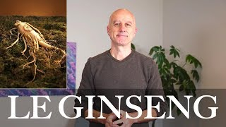 Ginseng : immunité basse, fatigue, épuisement, cancer