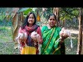 Bengali Chicken Curry Cooking Recipe for Village Kids by Mom | Village Food Factory & Lifestyle
