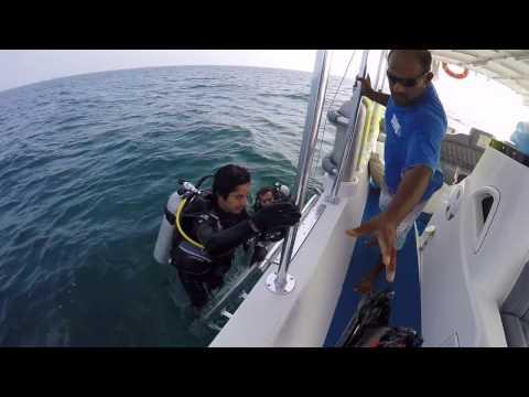 scuba open water Oman تدريب الغوص في عمان