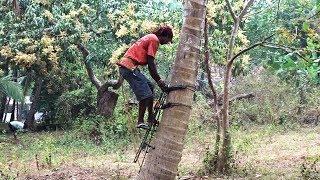Coconut Tree Climbing Machine