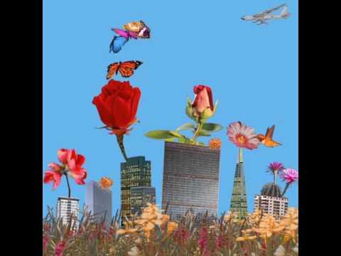 Garden (Album Visual)