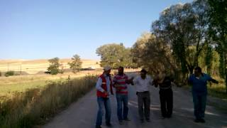 sivas halay ekibi Video
