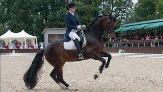 Equestrian sport ~ Коннный спорт ~ Weak ~