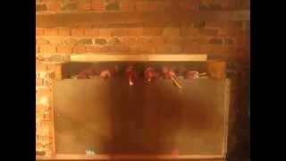 Repeat youtube video susara pusnica , BBQ smoker +smoking
