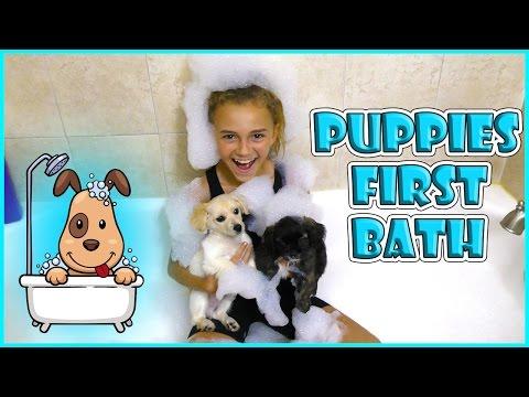 puppies-first-bath-|-kids-teach-mom-pokemon-go-|-we-are-the-davises
