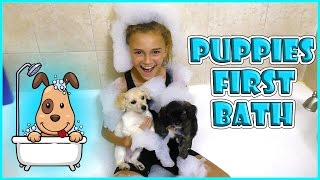PUPPIES FIRST BATH | KIDS TEACH MOM POKEMON GO | We Are The Davises