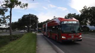 LYNX New Flyer XN60 226 on route 107 to LYNX Central Station