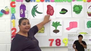 Preescolar clase: 36 Tema: Alimentos de origen vegetal y animal