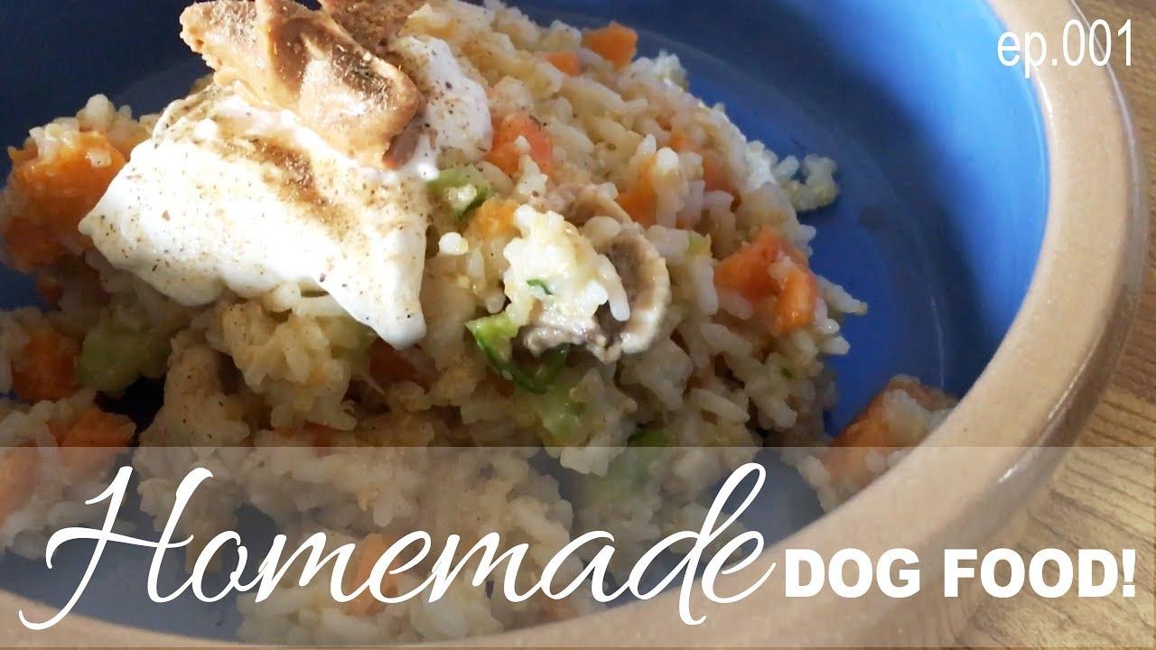 Homemade dog food recipes 001 quinoa rice with chicken veggies homemade dog food recipes 001 quinoa rice with chicken veggies forumfinder Choice Image