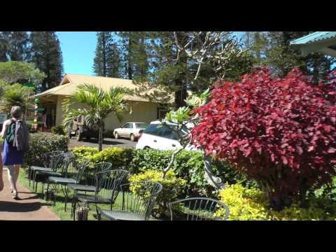 walking tour around Dole Park, Lanai City, Hawaii January 2013