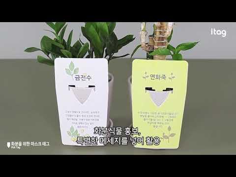 제품소개-화분을 휘한 마스크 픽태그