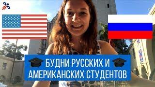 Чем отличается учёба в США и в России. Будни русских и американсих студентов | Образование в США