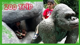 Trip to the The ZOO-Lots of Animals- Kids having Fun at Jacksonville ZOO-Kids Z Fun
