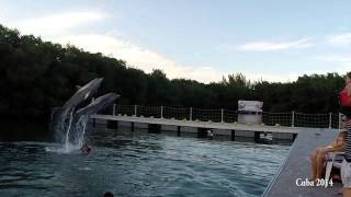 Jessica swims with dolphins in Varadero, Cuba