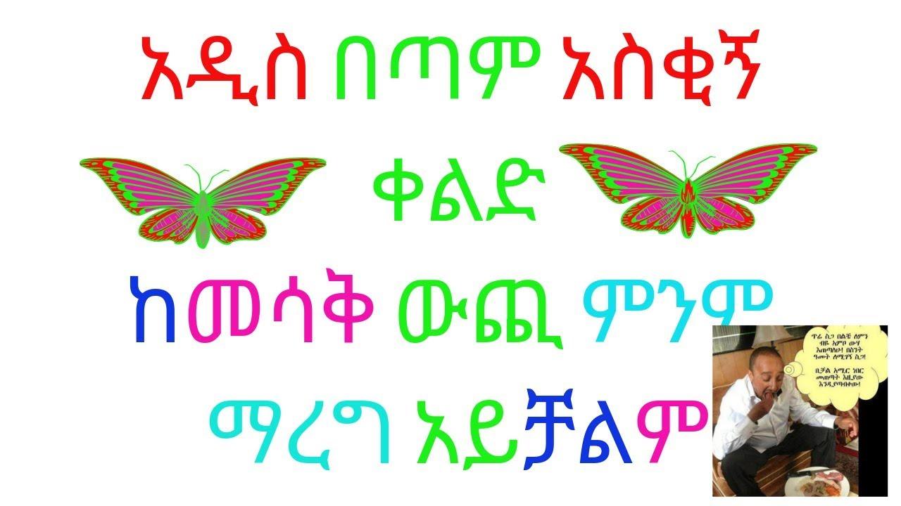 amharic movies -comedy 2019- new ethiopian comedy 2019 አዲስ አማርኛ ቀልድ