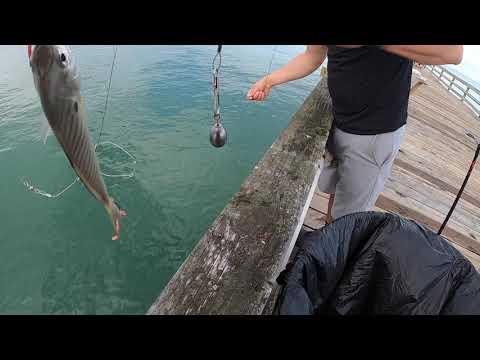 Nags Head (NC) Pier Fishing