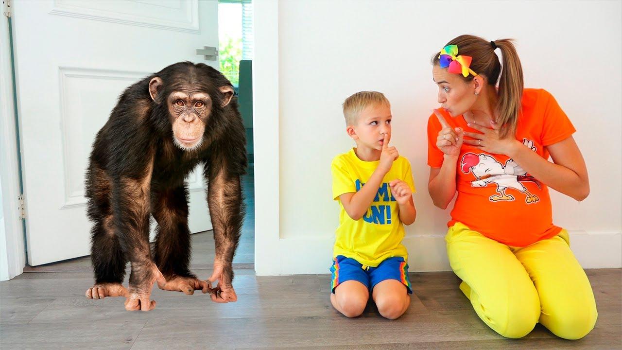 Download Vlad ve Niki yeni Pet istiyor | çocuklar için komik hikayeler